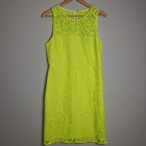 J.Crew Collection Lace Sheath Dress Size 10